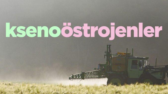 Ksenoöstrojenler DDT