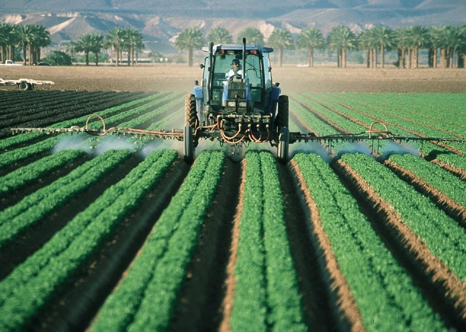 DDT Ksenöstrojen kaynaklarından biridir